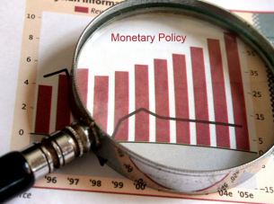 Monetary Policy under Magnifying Glass
